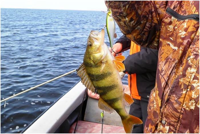 происходила рыбалка